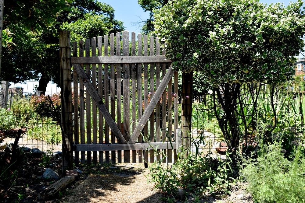 gate_28241259263_o.jpg