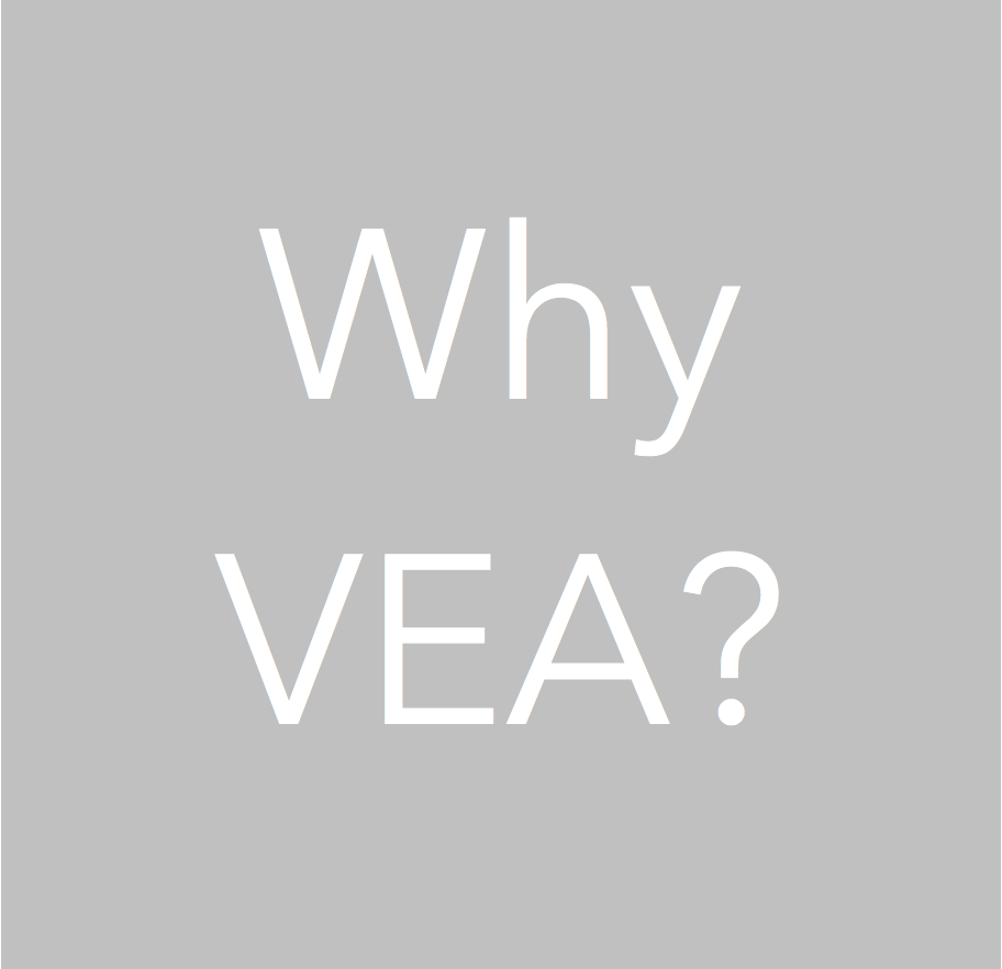 Why VEA Services? What makes VEA Services and working with Jennifer Maffei unique and how it can benefit your business!