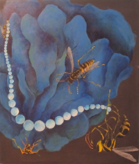 Yellow Jackets and Pearls