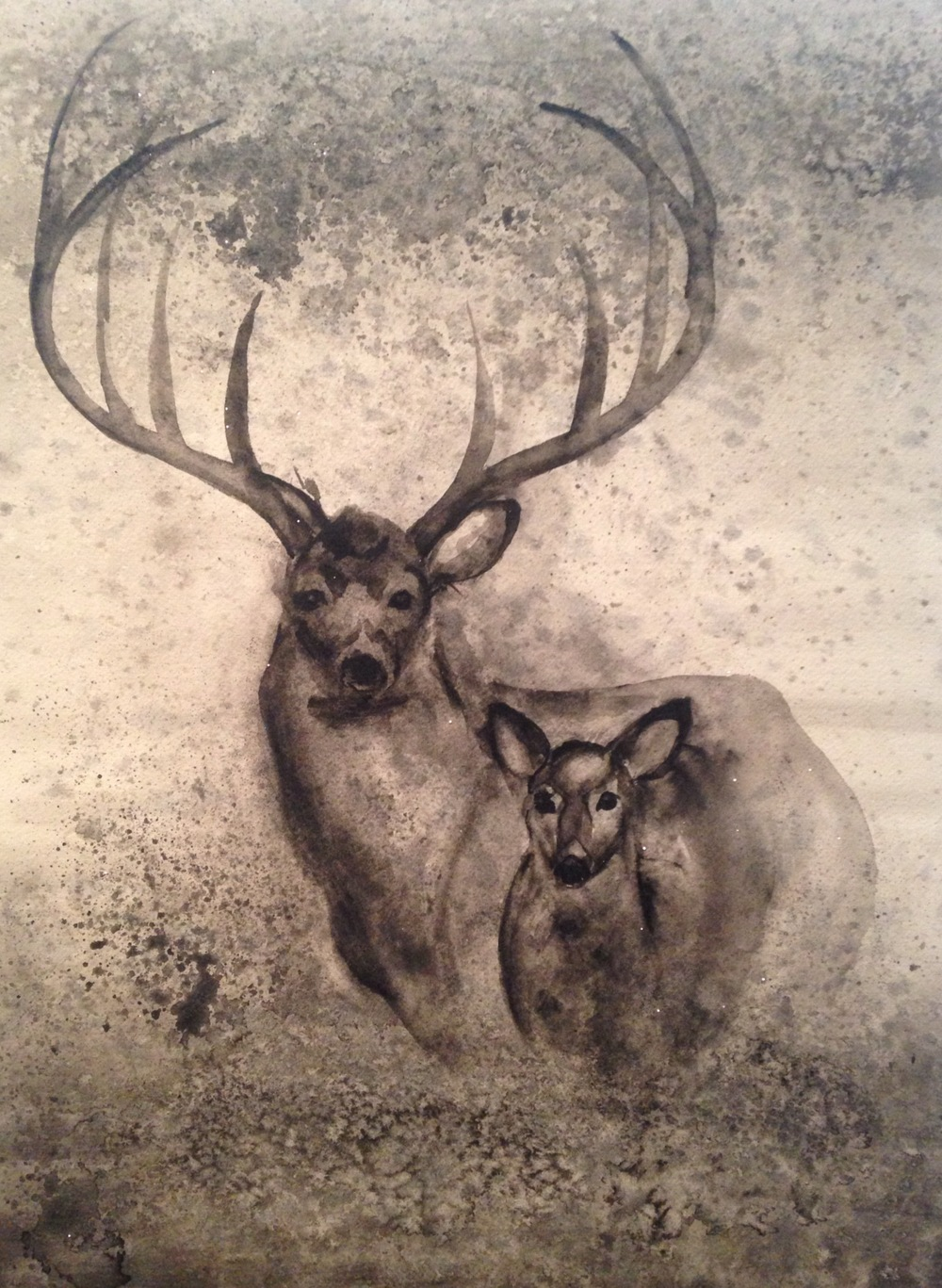 "Buck and Doe  salt scrubbed water color on cold press paper  12"" x 16""  SOLD"