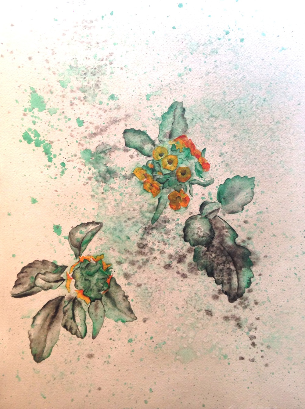 """Misty Green Flowers  salt scrubbed water color on cold press paper  12"""" x 16""""  $500"""