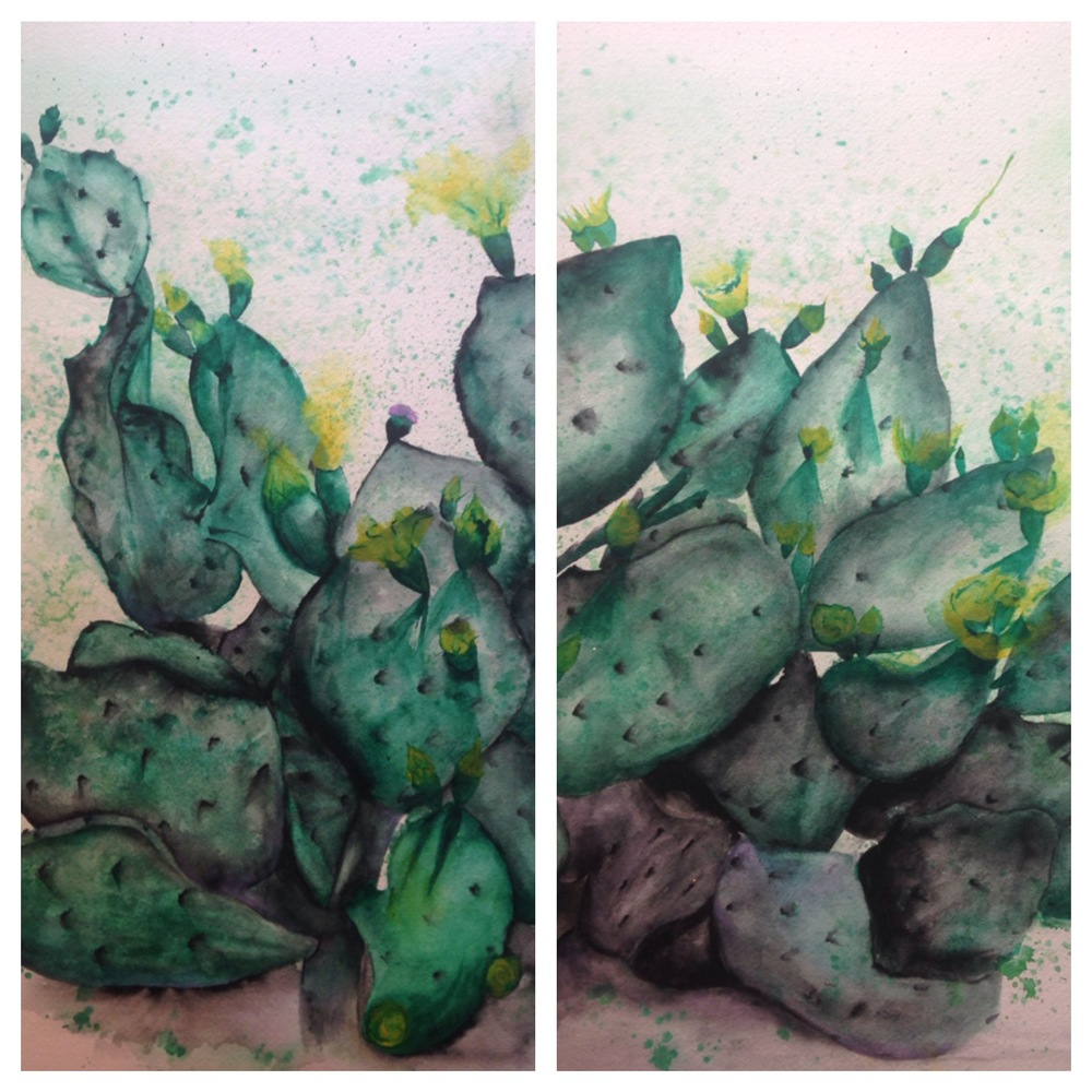 """Kinney Avenue Cactus (diptych)  salt scrubbed water color on cold press paper  2 panels (12"""" x 16"""" each)  $900"""