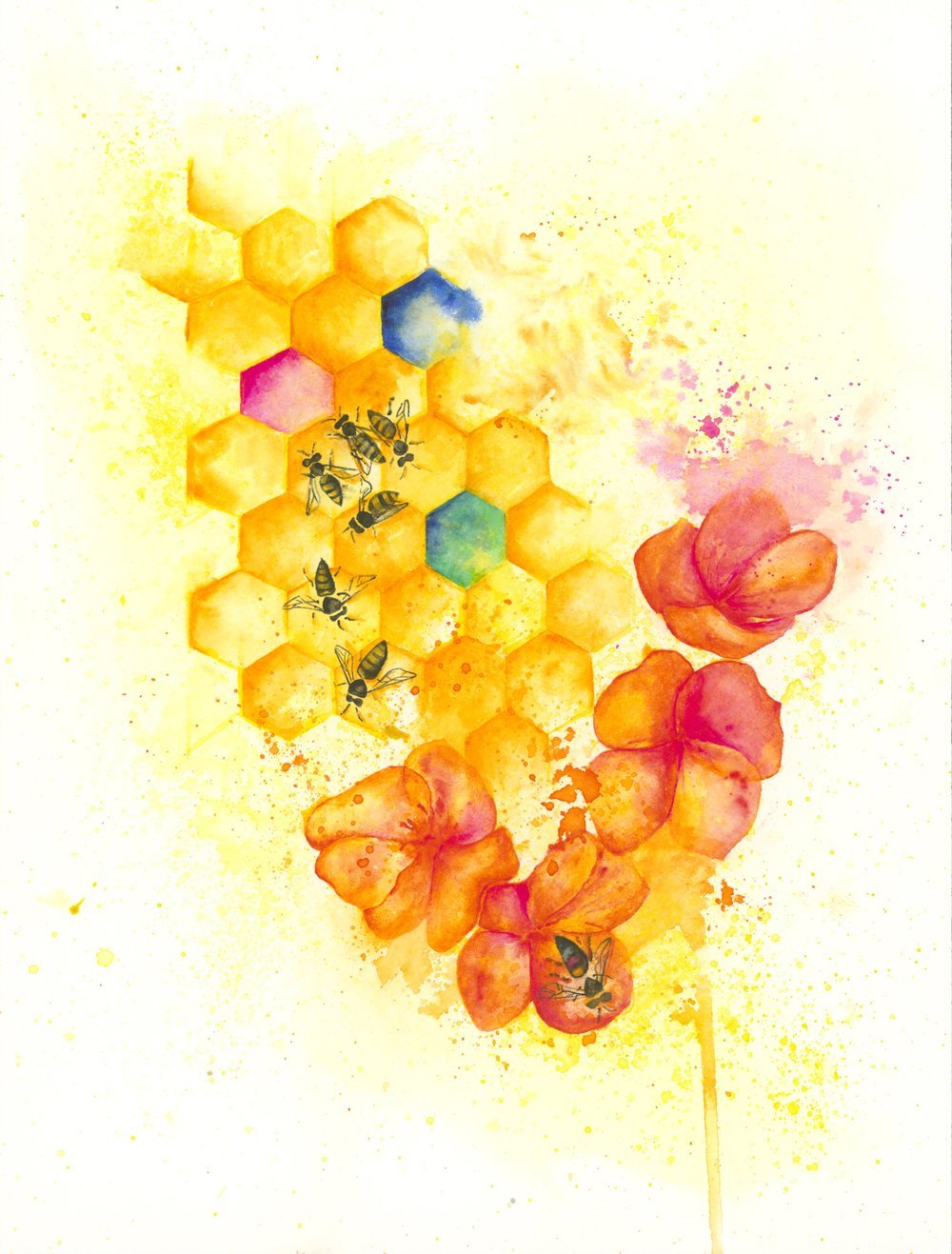 bees and honeycomb adj jpeg.jpg