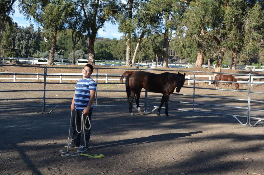 Joshua training horse.JPG