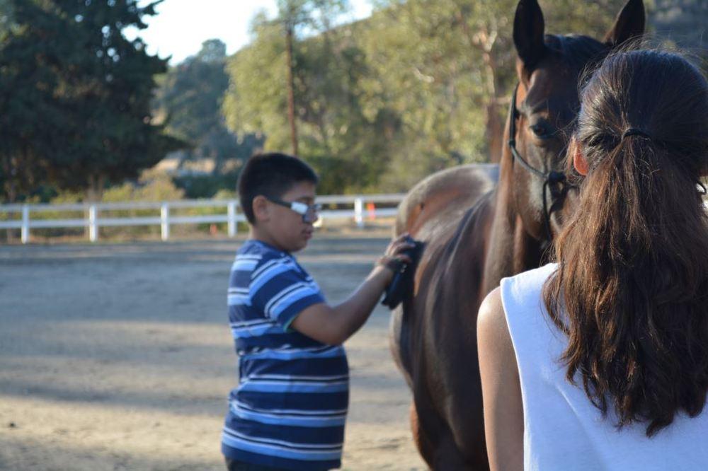 Joshua cleaning horse.JPG