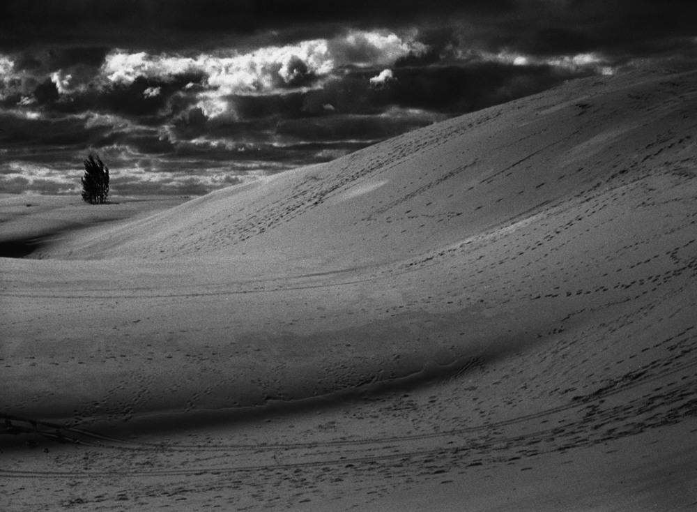 Silver Lake Sand Dunes II, 2013
