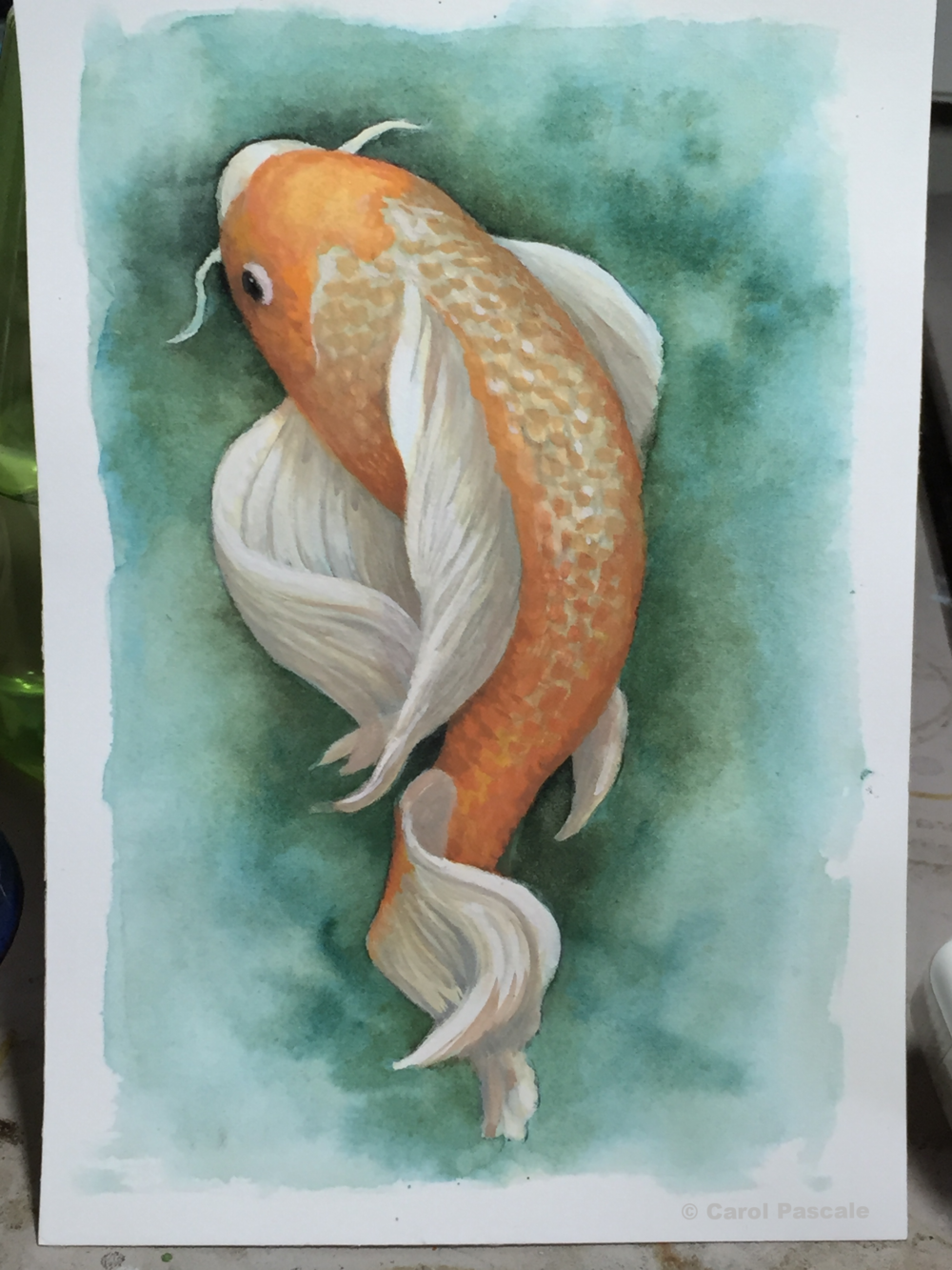 Koi, watercolor and gouache, 5x7""