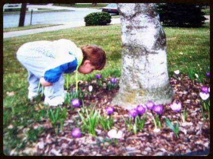 Spring Delight   Source: Joan Prescott