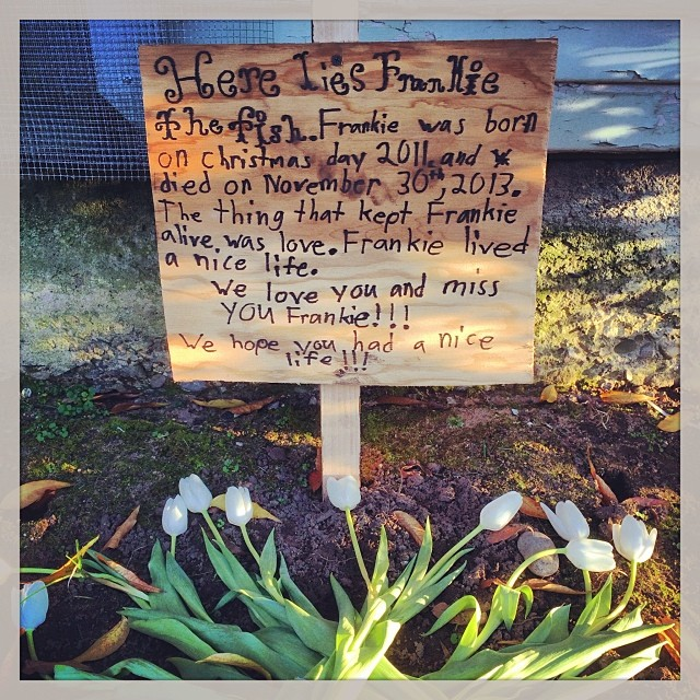 The thing that kept Frankie alive… (at Post at Encinal)