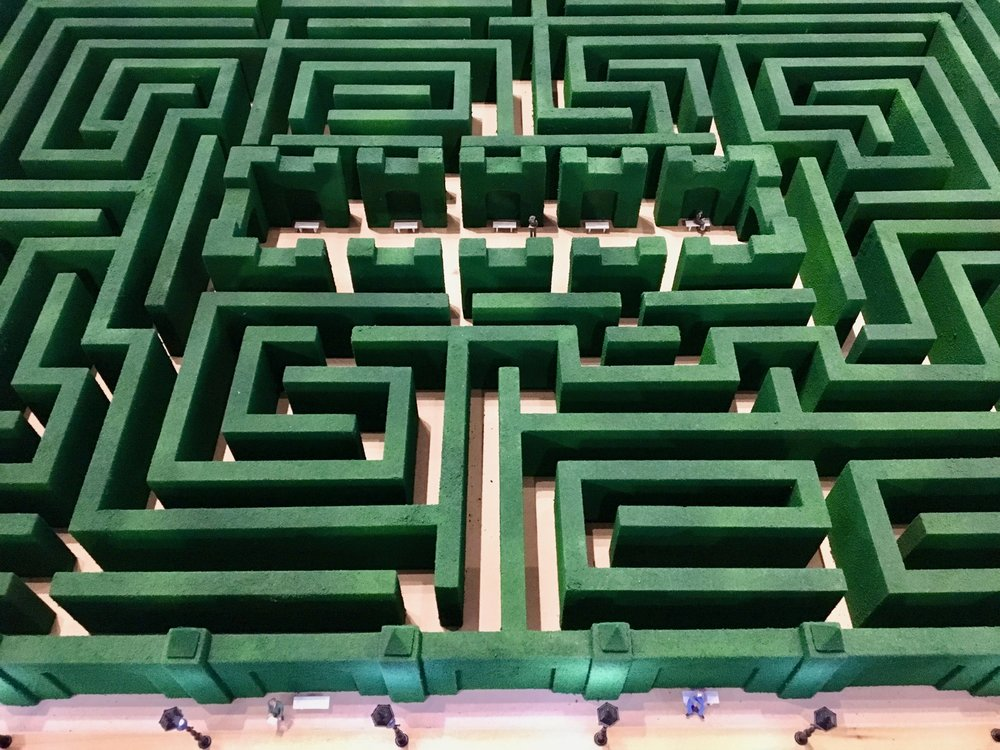 Hedge maze model