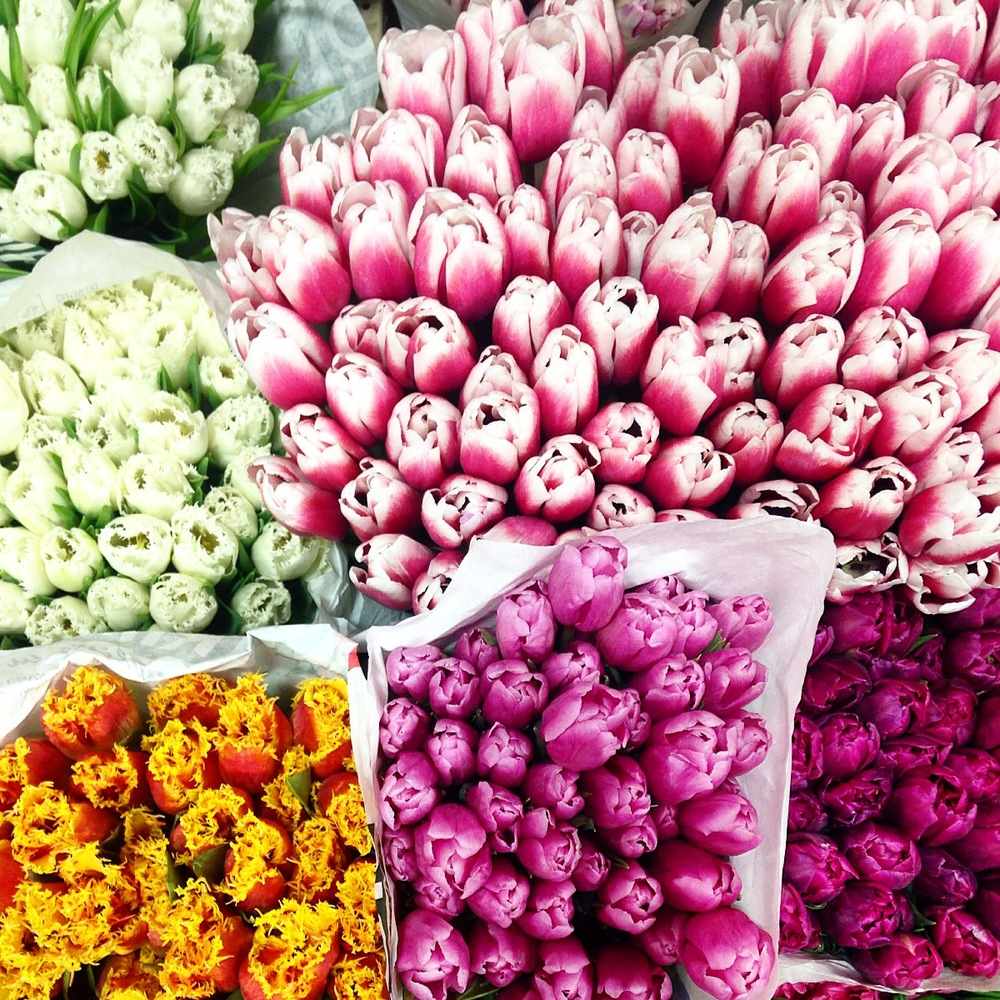 Brightly colored tulips at the flower market