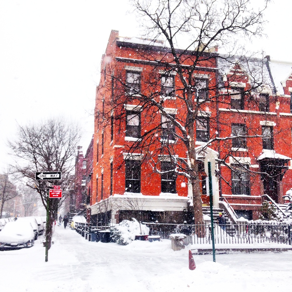 A very snowy morning in Brooklyn