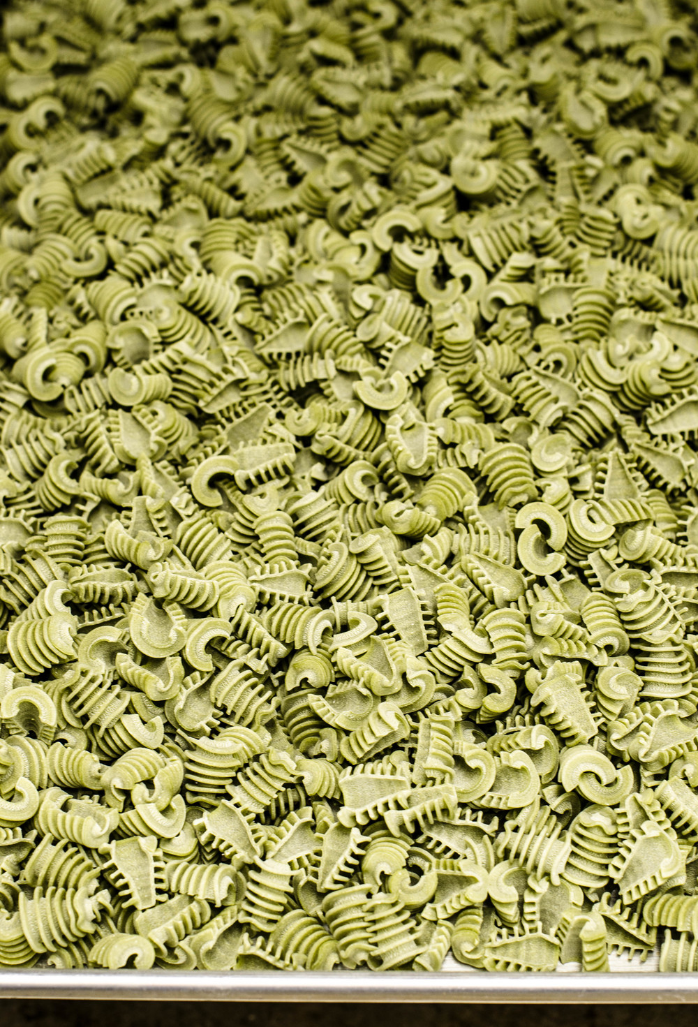 ROSE & IVY JOURNAL SFOGLINI PASTA