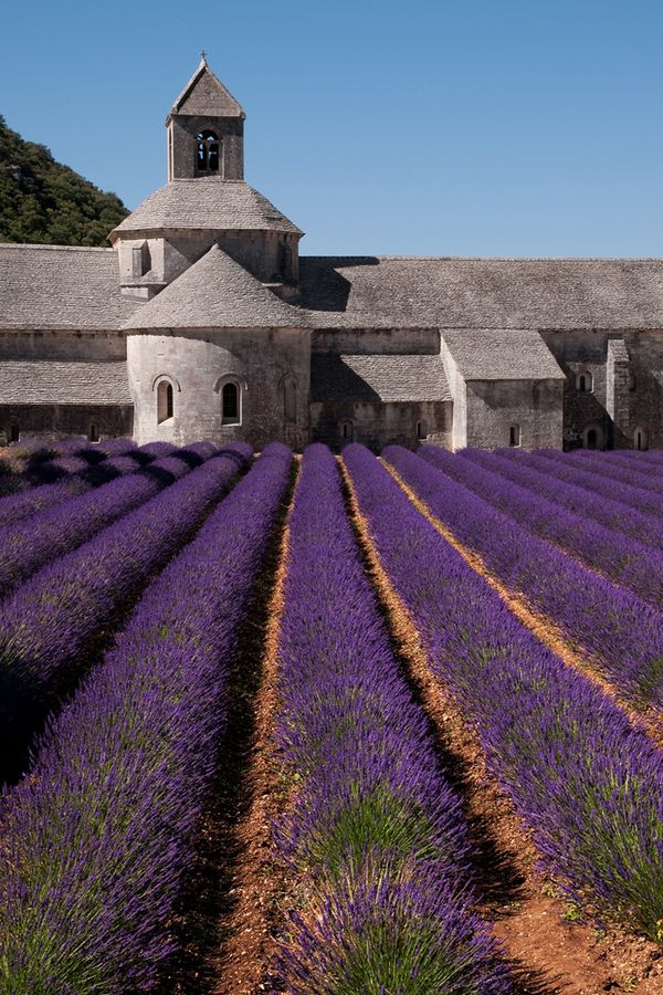 Escape to Provence Luberon