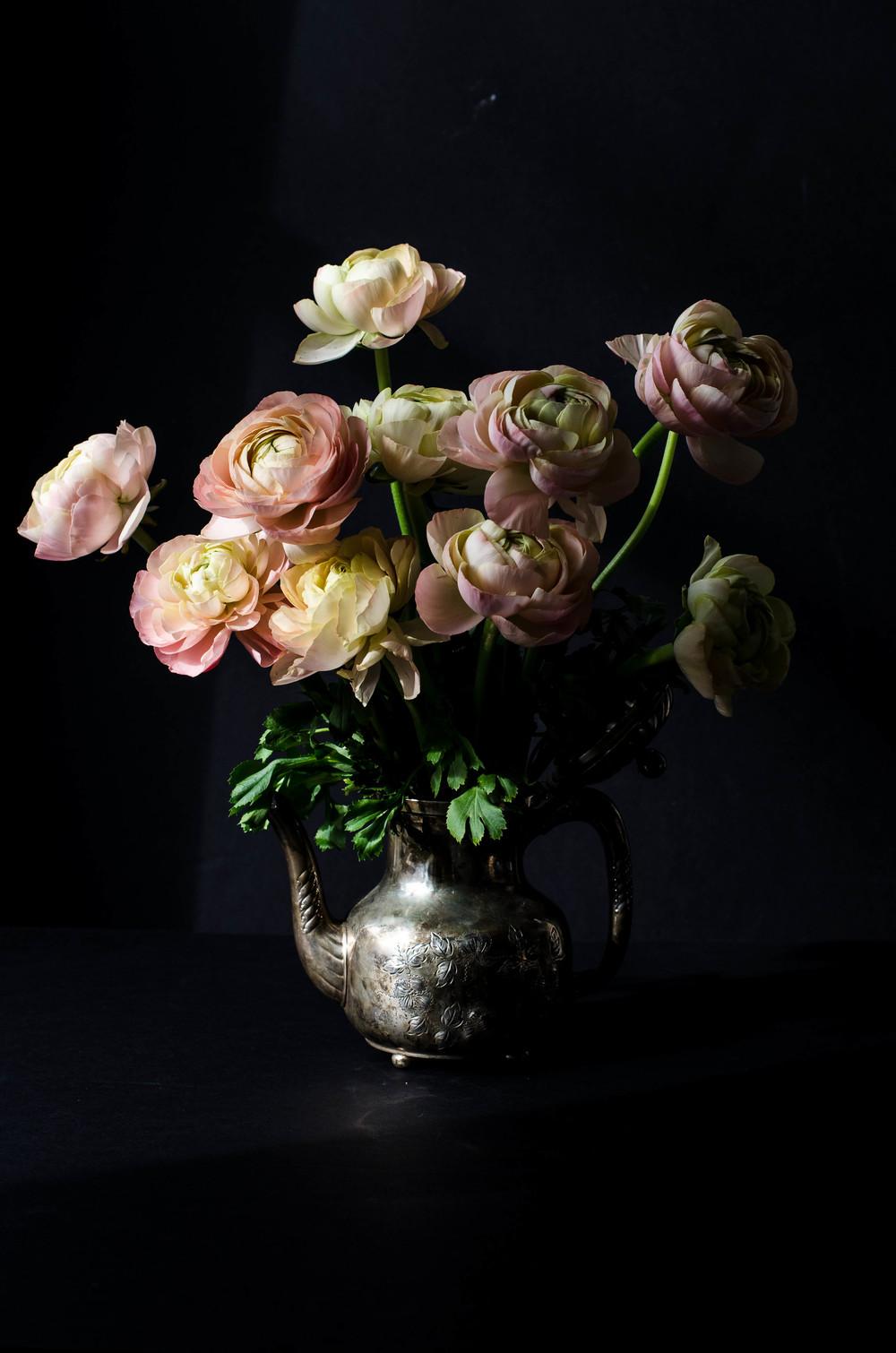 'Pastel Grand' Ranunculus