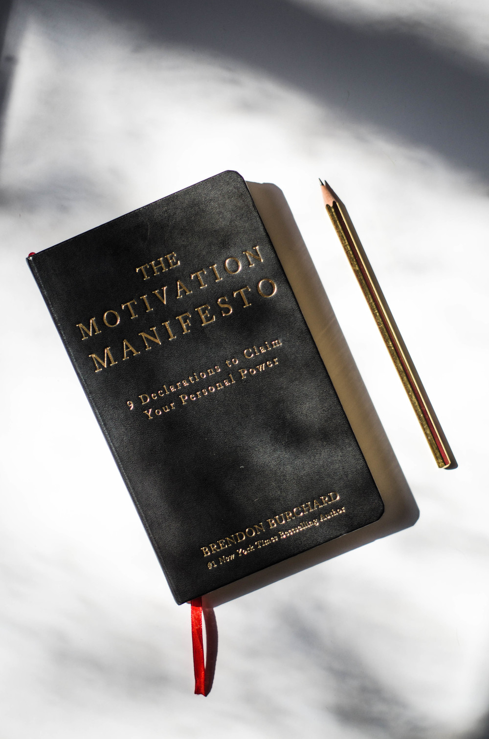 ROSE & IVY JOurnal A Book That Might Change Your Life The Motivation Manifesto