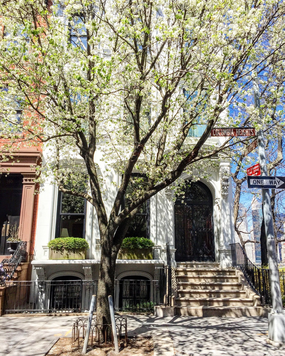 There isn't anything quite like Brooklyn Heights in the spring