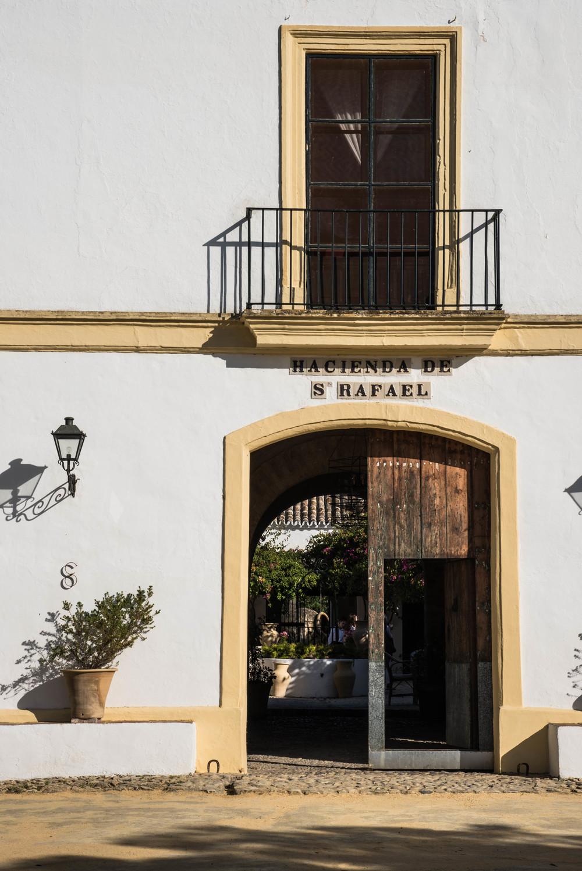 ROSE & IVY Journal Escape Hacienda San Rafael Spain