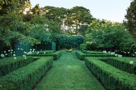 ROSE & IVY Journal Garden Dreamer An Editor's Long Island Oasis