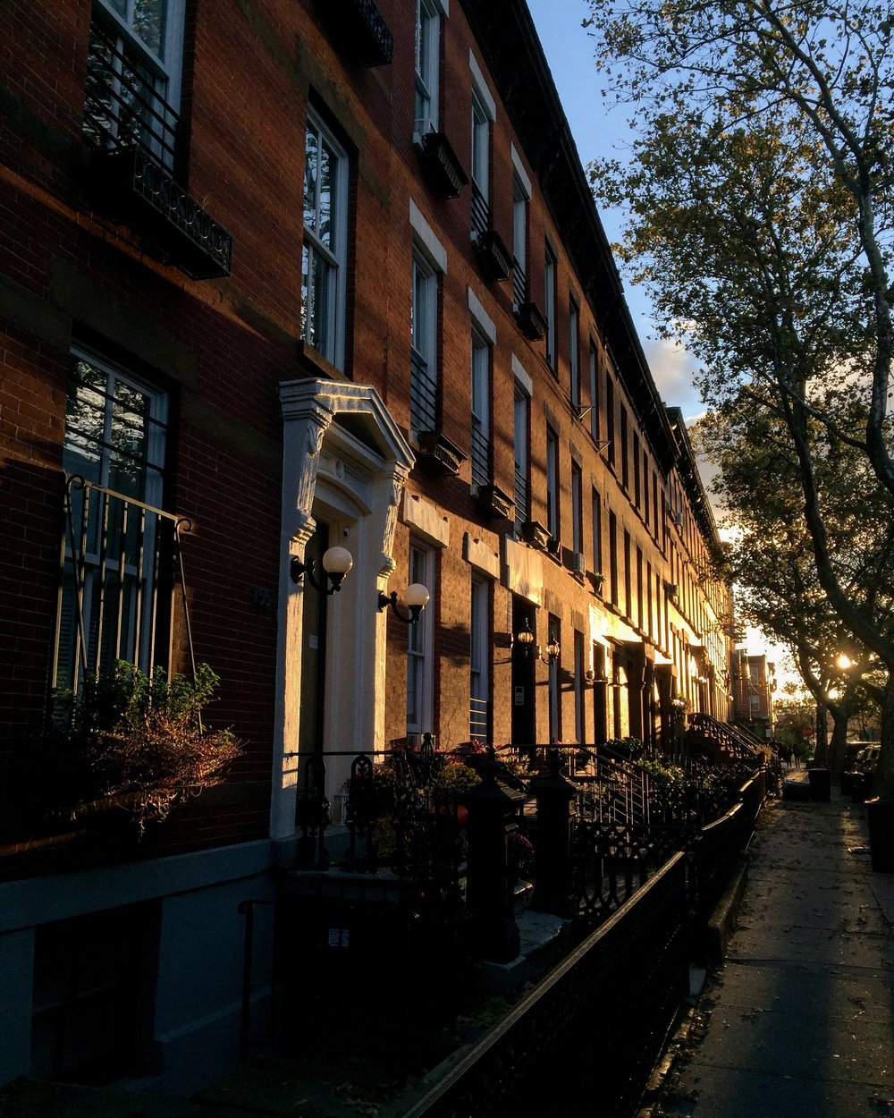 Early morning light on Brooklyn brownstones