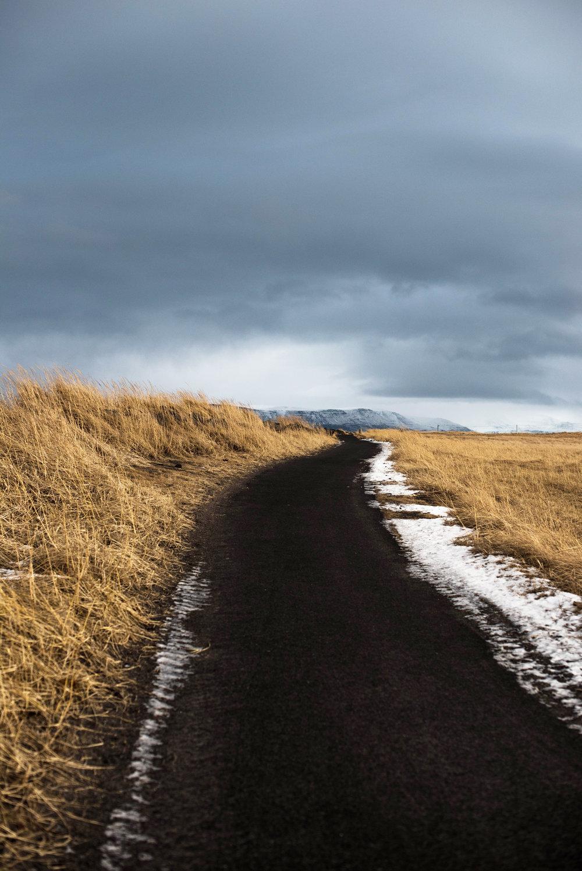 ROSE & IVY Journal Travel 48 Hours in Reykjavik