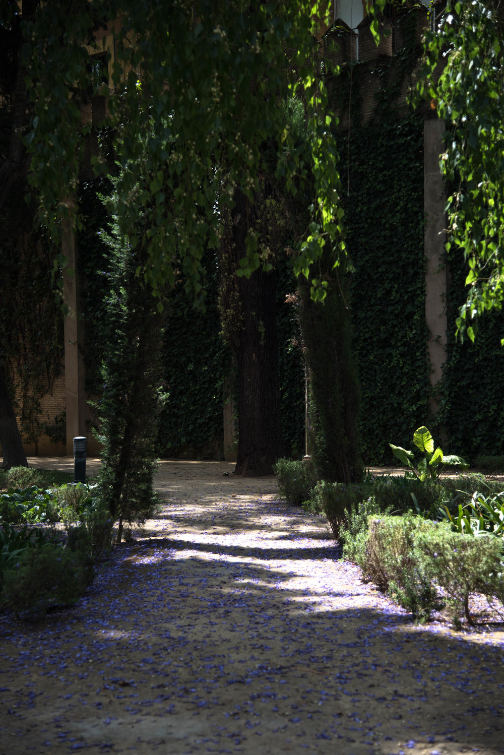 ROSE & IVY Journal Garden Dreamer | The Alcázar  & Gardens Seville, Spain