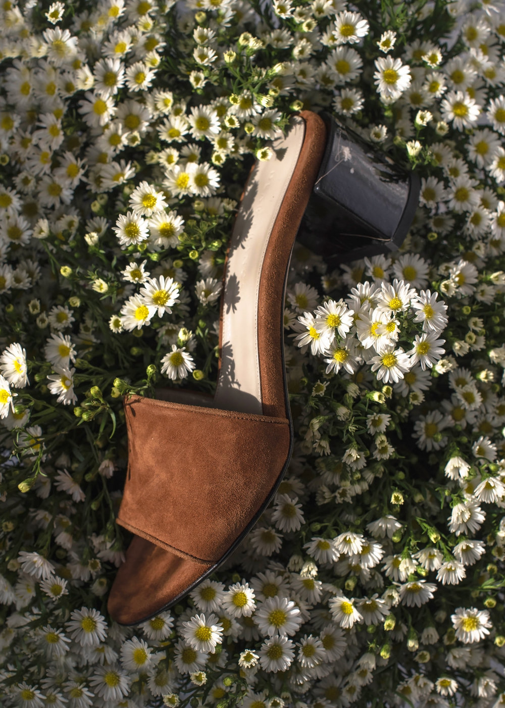 ROSE & IVY Journal Issue No. 07 Dear Frances Eva Mules