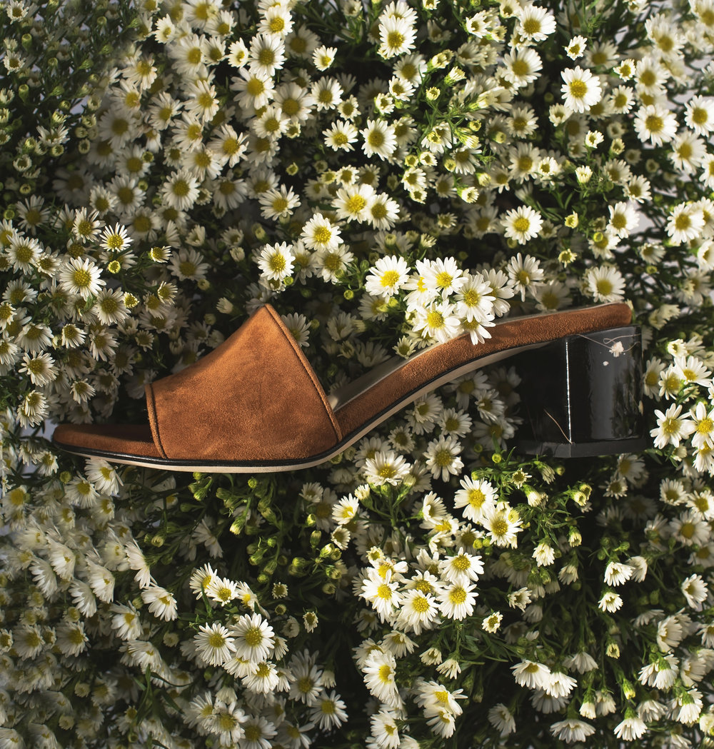 ROSE & IVY Journal Issue No. 7 Dear Frances Eva Mules