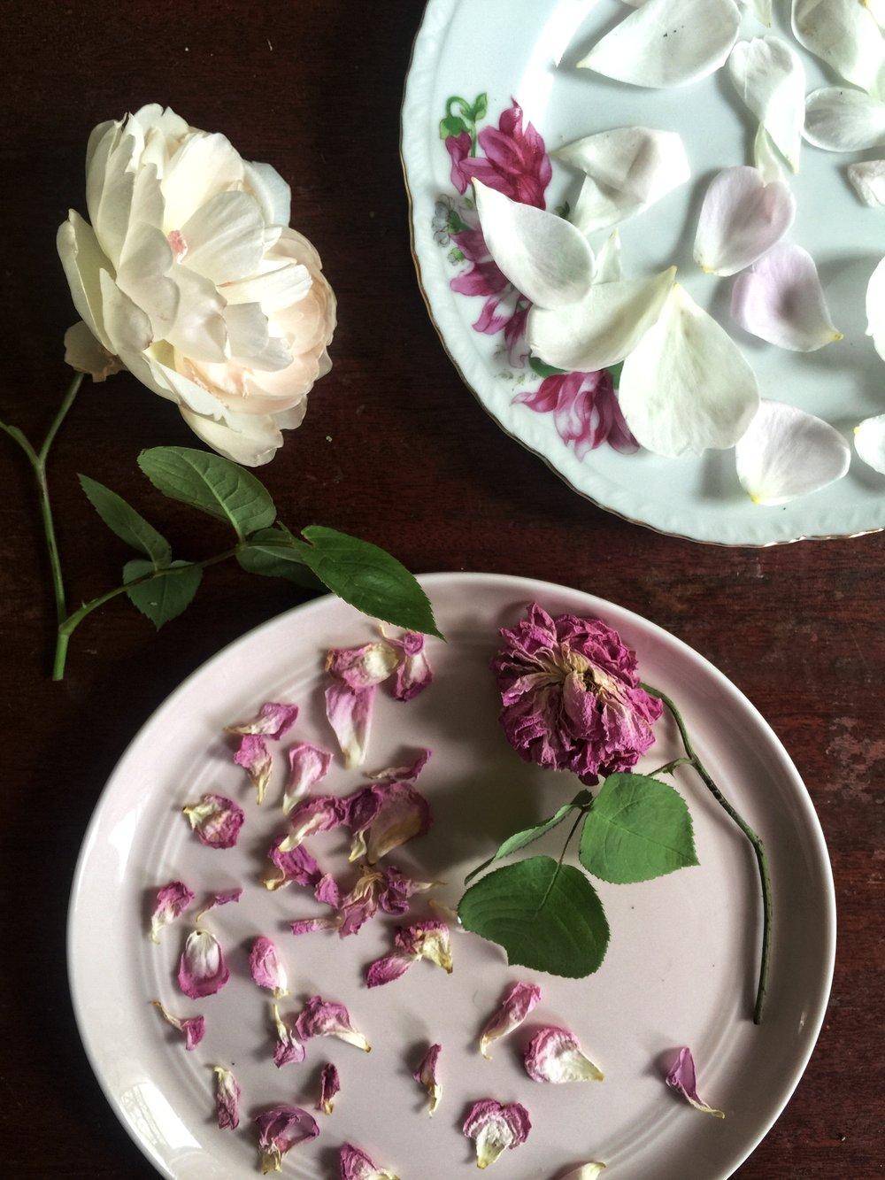 ROSE & IVY Journal Drying Rose Petals