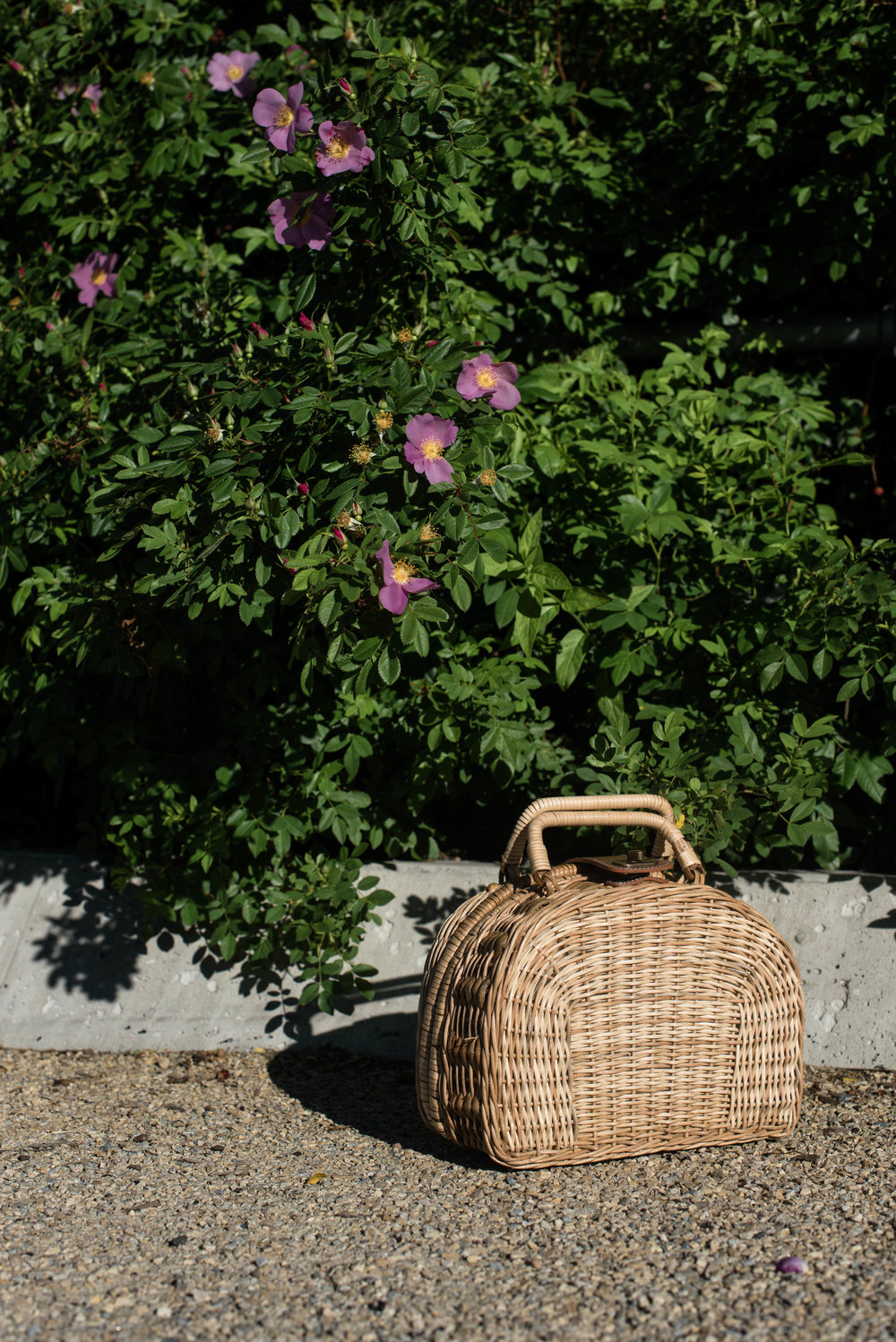 ROSE & IVY Journal Summer Bags for the Beach & City  with Kayu