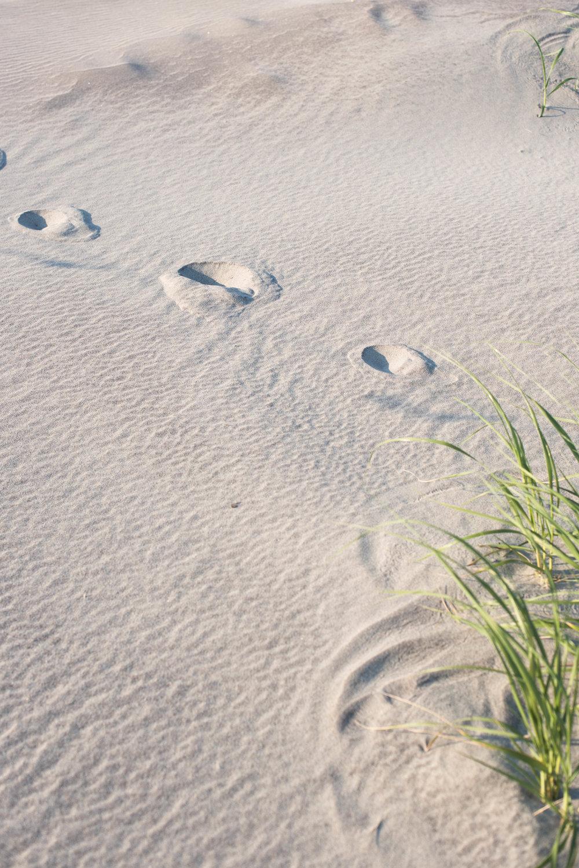 ROSE & IVY Journal Beach Wear Sandals Parme Marin