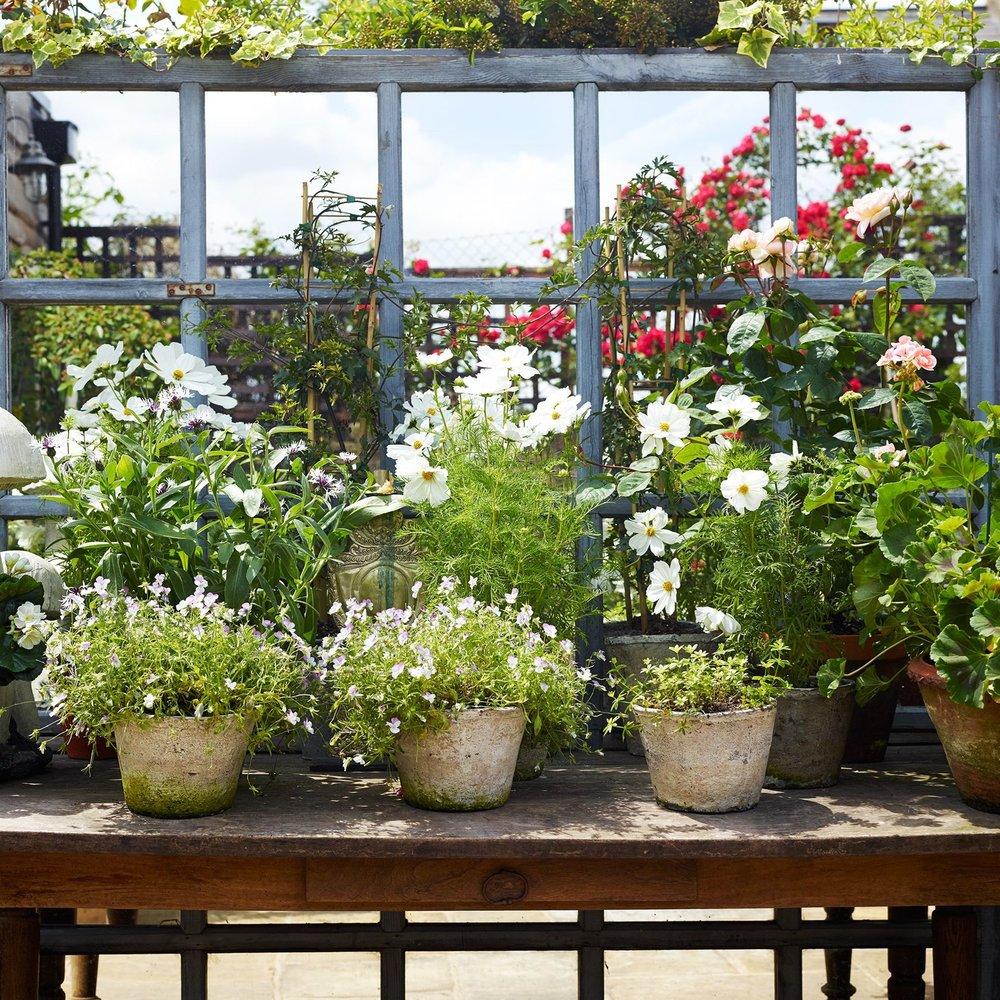 Pretty Planters for the Garden -