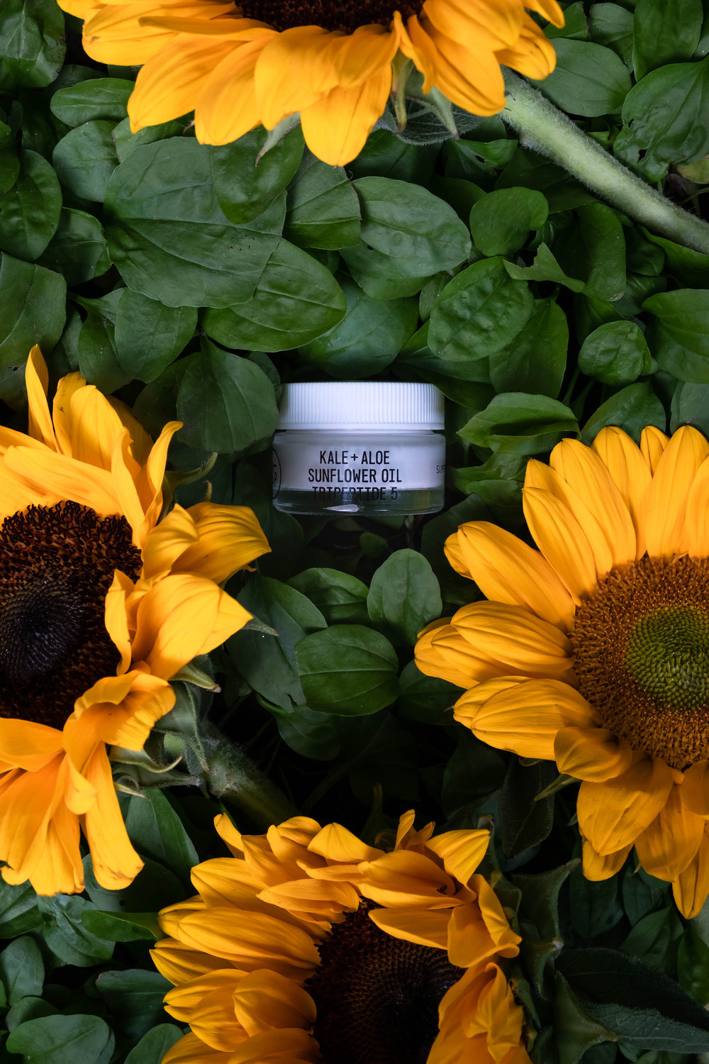 ROSE & IVY Journal The Beauty Ingredient Sunflower Oil