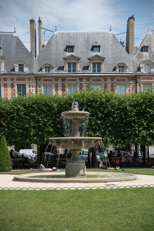 ROSE & IVY Journal An Ode to Paris