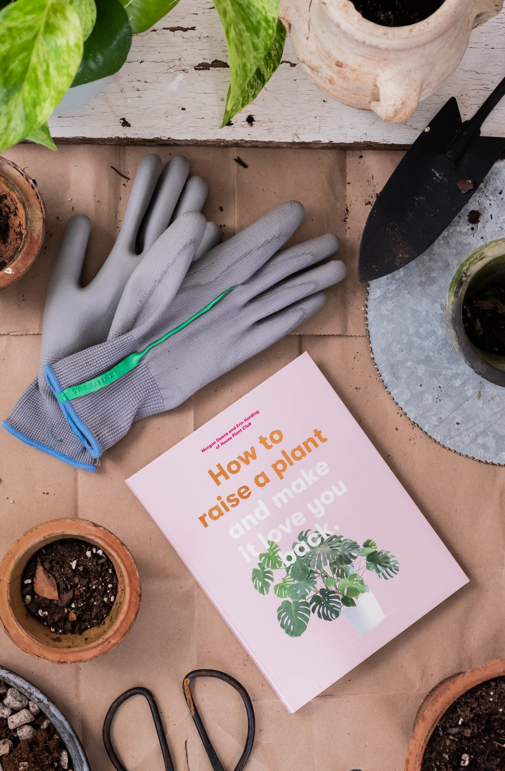 ROSE & IVY Journal Holiday Gifting Help Them Cultivate a Green Thumb Plants Make People Happy.jpeg