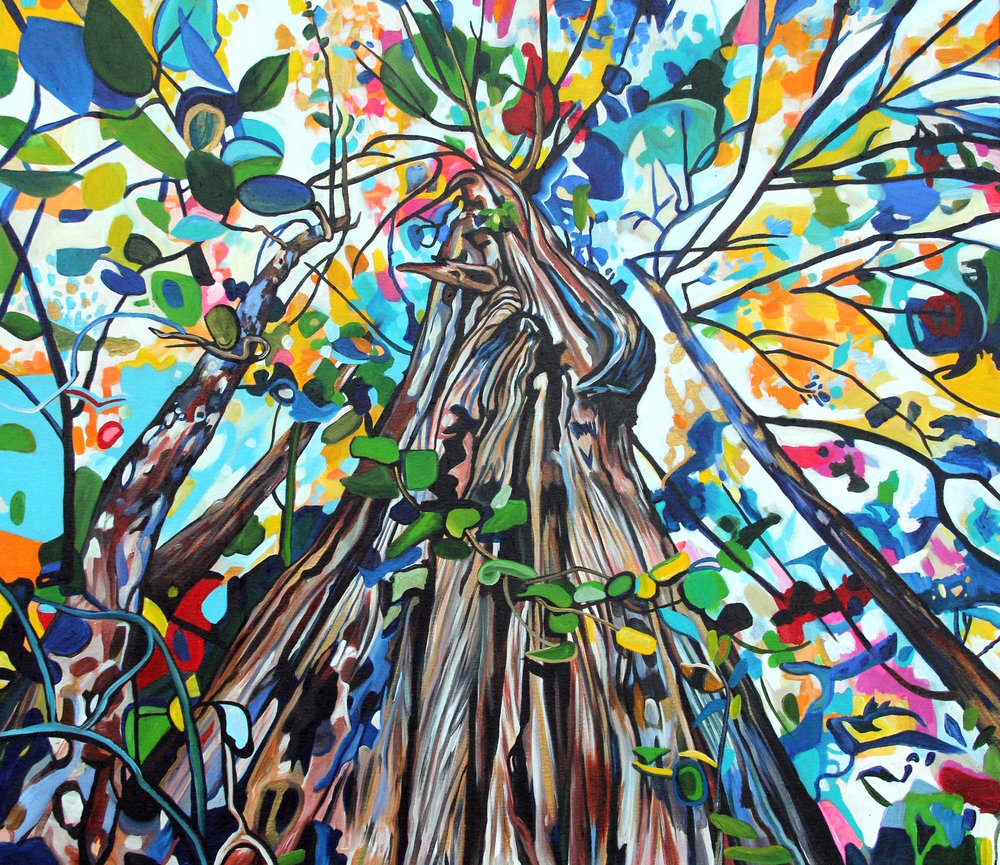 Climbing Cedar (2015) acrylic on canvas 30x26 Taralee Guild 2 (low res).jpg