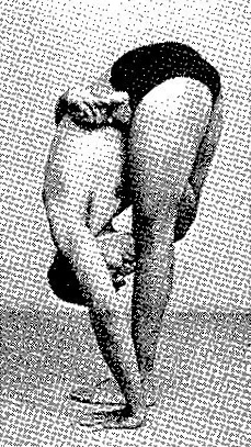 Ardha Baddha Padmottanasana Iyengar