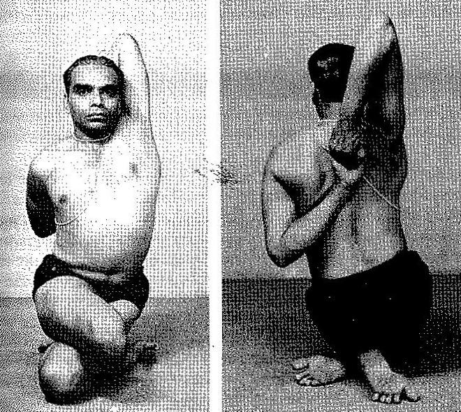 Gomukhasana Iyengar