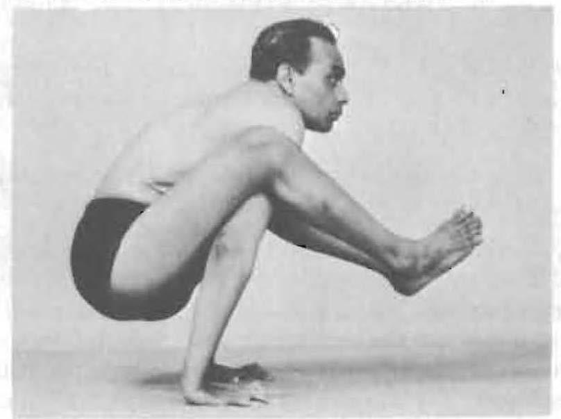 124-dwi-hasta-bhujangasana-yoga-pose-iyengar.jpg