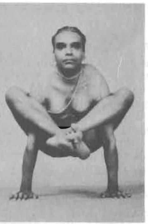 125-bhujapidasana-yoga-pose-iyengar.jpg