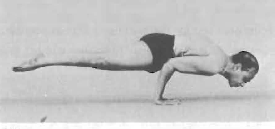 128-hamsasana-yoga-pose-iyengar.jpg