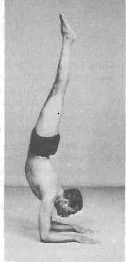 129-pincha-mayurasana-yoga-pose-iyengar.jpg
