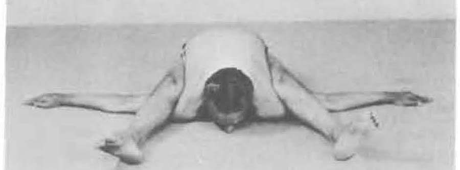 132-kurmasana-yoga-pose-iyengar.jpg