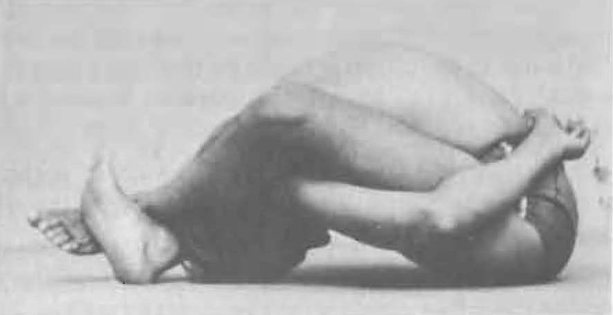133-supta-kurmasana-yoga-pose-iyengar.jpg