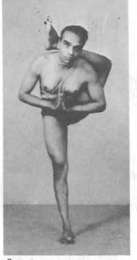141-durvasana-yoga-pose-iyengar.jpg