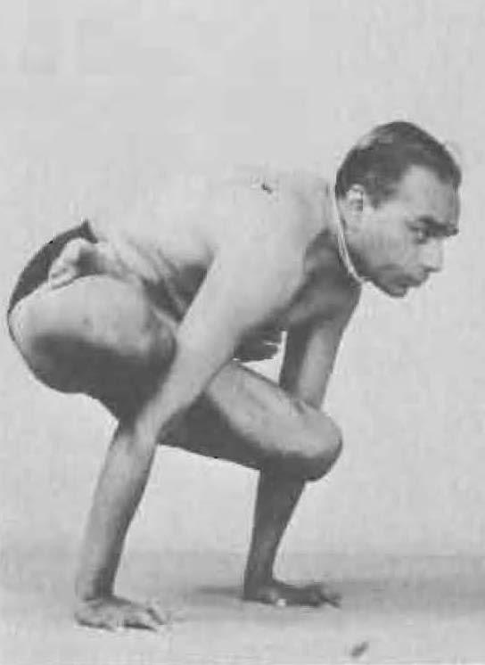 155-galavasana-yoga-pose-iyengar.jpg