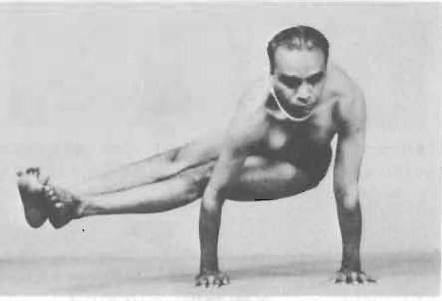 157-dwi-pada-koundinyasana-yoga-pose-iyengar.jpg