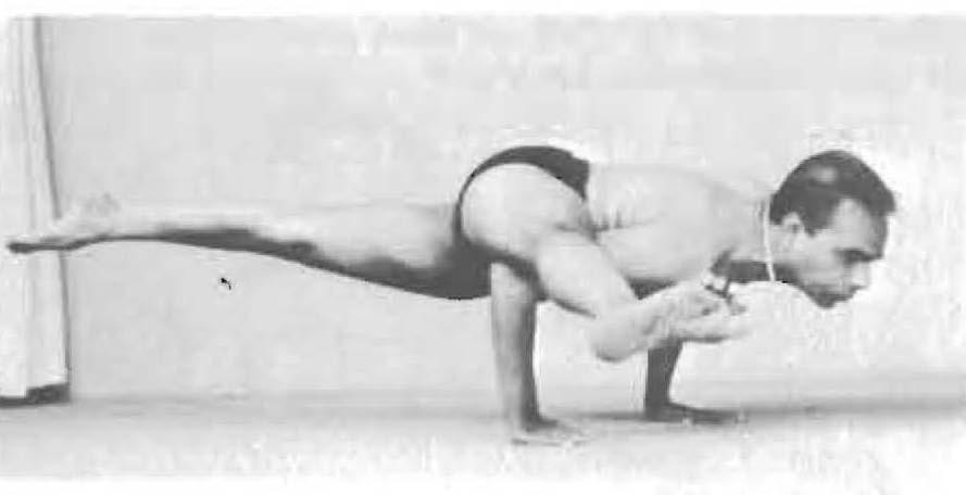 159-eka-pada-koundinyasana-2-yoga-pose-iyengar.jpg