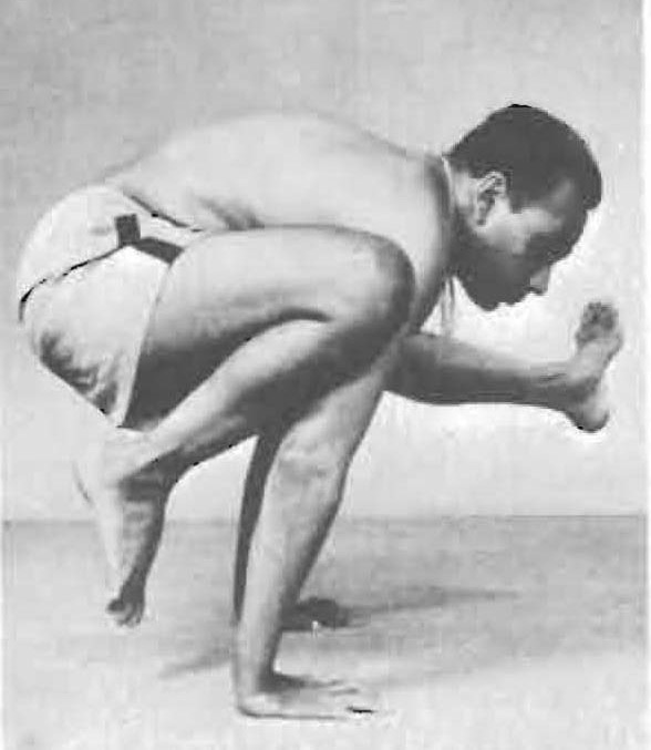 161-eka-pada-bakasana-2-yoga-pose-iyengar.jpg