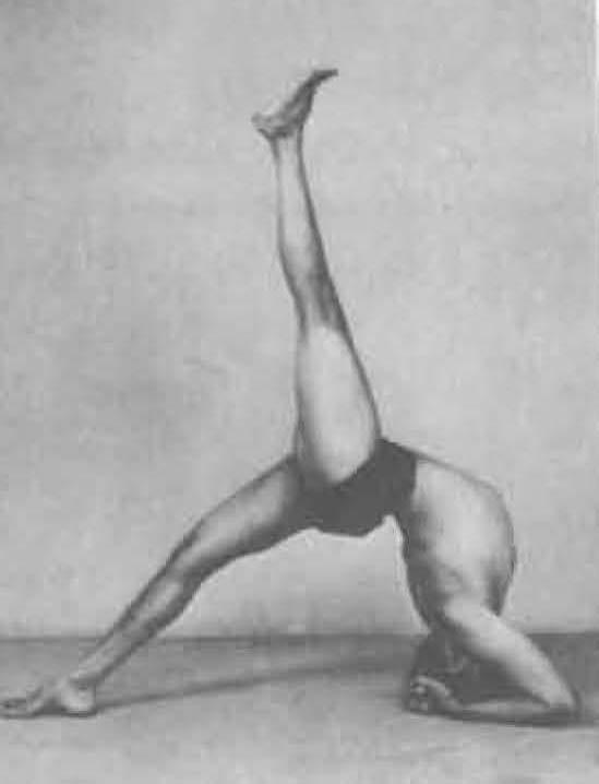 178-eka-pada-viparita-dandasana-1-yoga-pose-iyengar.jpg